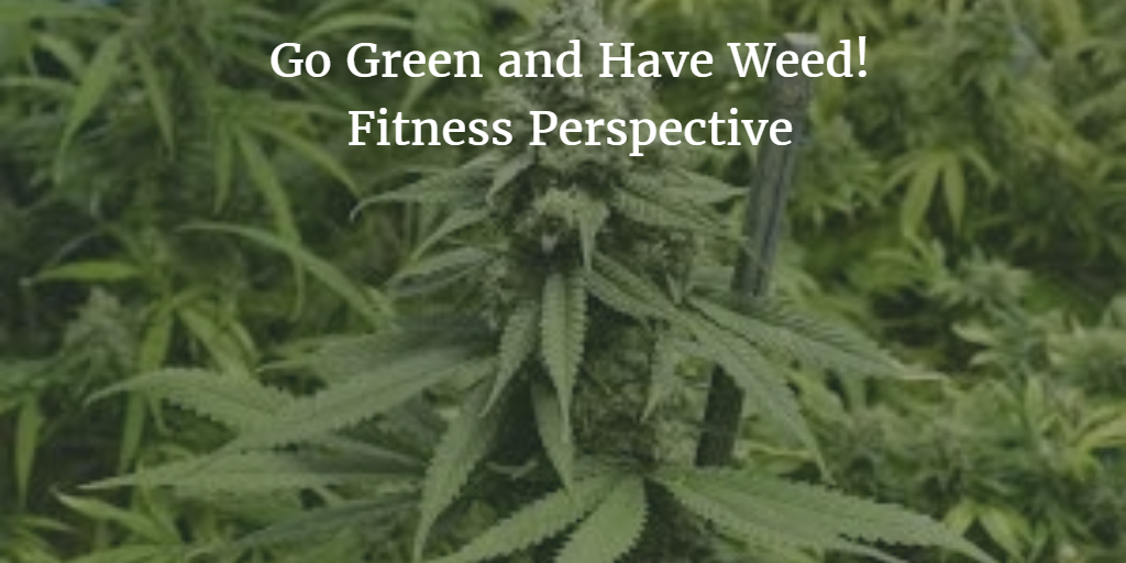 Does weed help you loose weight?