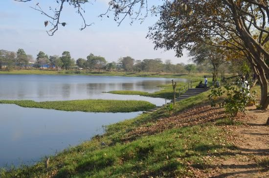 Beautiful Running Tracks in Bangalore - Agara Lake