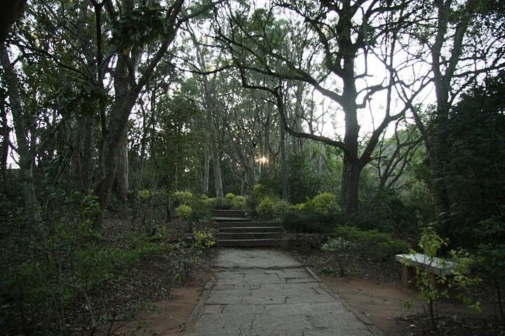 Beautiful Running Tracks in Bangalore - Nandi Hill