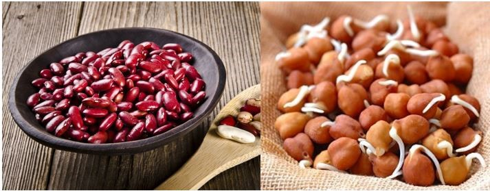 Rajma - protein rich foods