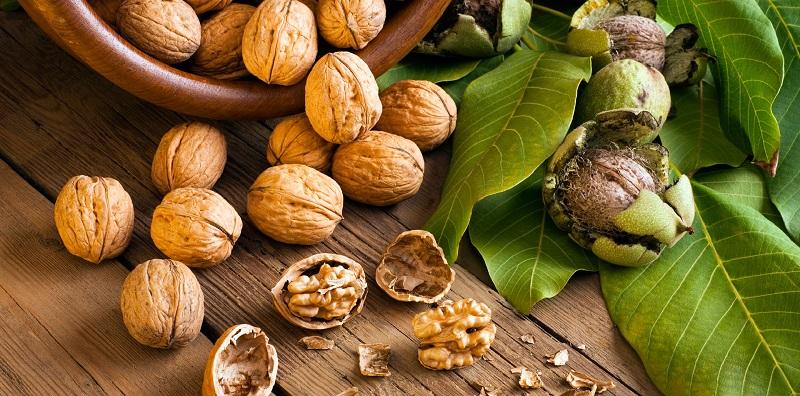 dry fruits benefits