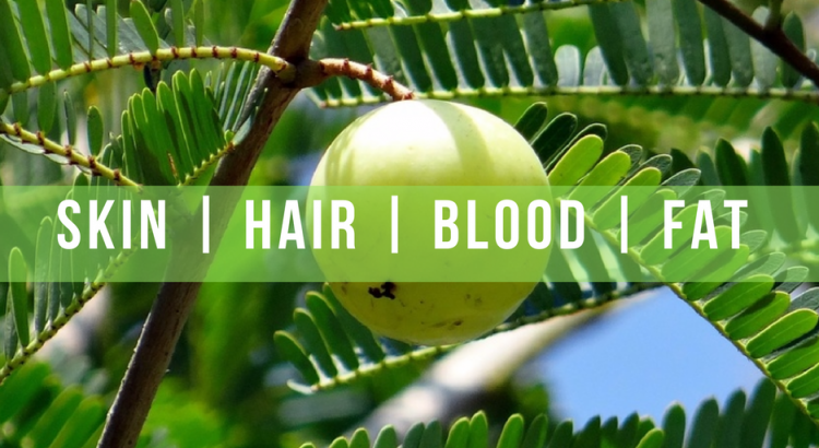 Amazing Benefits of Amla for hair and health