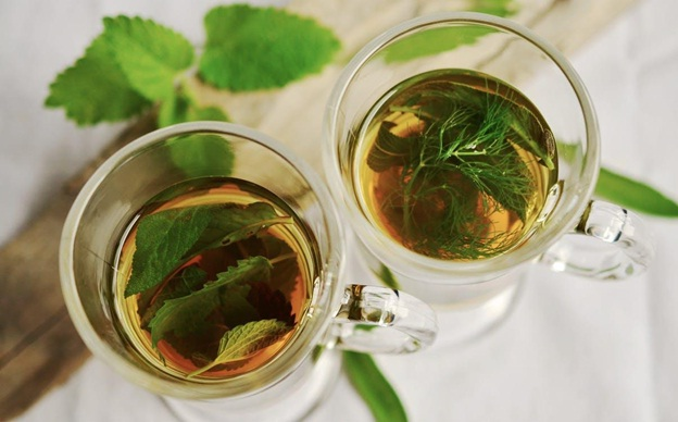 honey and mint for loose motion remedies