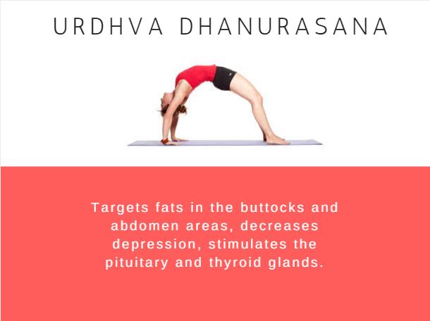 Urdhyadhanurasna- Ramdev baba yoga for weight loss