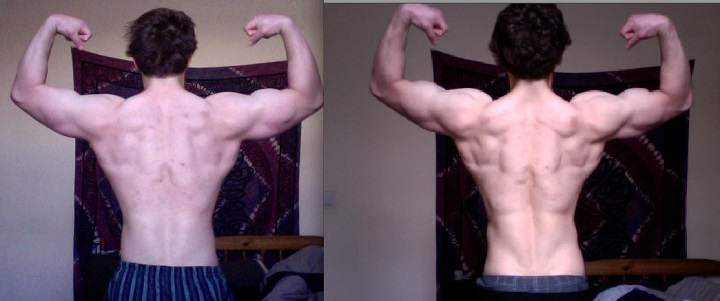 experiment result after carb diet