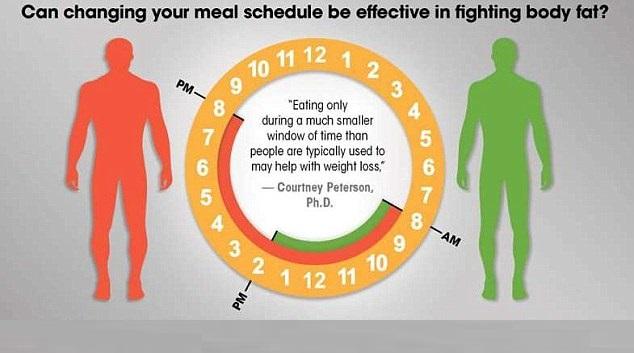 diet schedule
